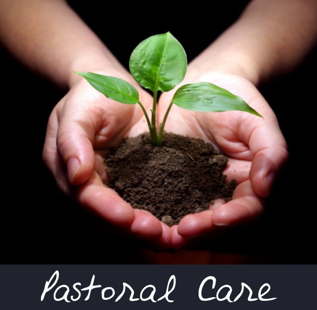 pastorial care The church as a healing community the church, by its very nature as the body of  christ, calls its members to become healing communities despite the extent.